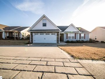 328 Hawk Valley Drive Travelers Rest, SC 29690 - Image 1