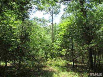 848 Dorcurt Hills Road Pittsboro, NC 27312 - Image 1