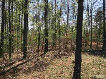 462 Chapel Ridge Drive Pittsboro, NC 27312 - Image 1
