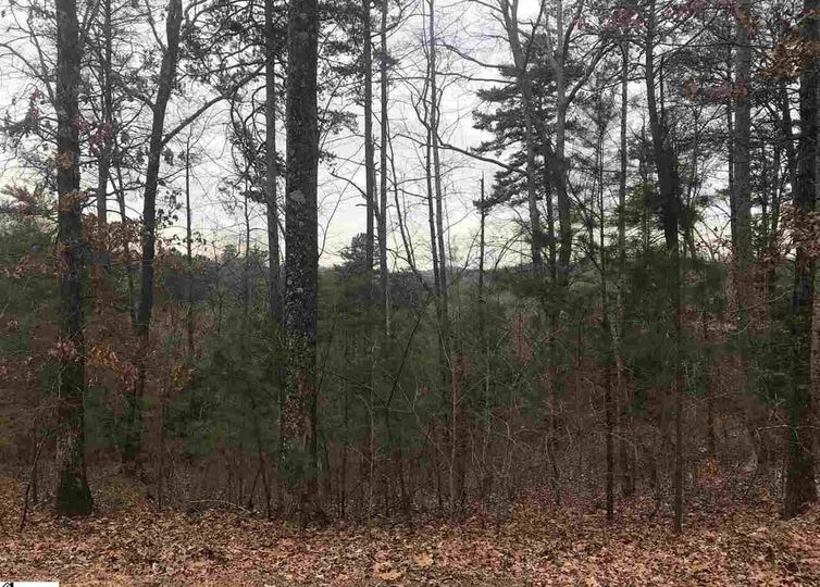 515 Augusta Links Trail Travelers Rest, SC 29690