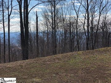 275 Lost Trail Drive Landrum, SC 29356 - Image 1