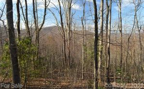 Lot 92 Corbin Mountain Road Tuxedo, NC 28790 - Image 1