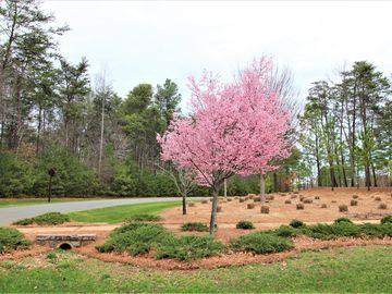 10620 Sweetleaf Place Charlotte, NC 28278 - Image 1