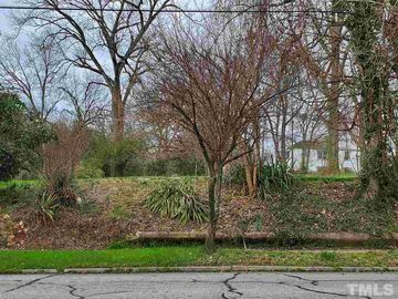 Lot 1 Davis Street Burlington, NC 27215 - Image 1