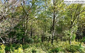 Lot #22 Center Court Drive Boone, NC 28607 - Image 1