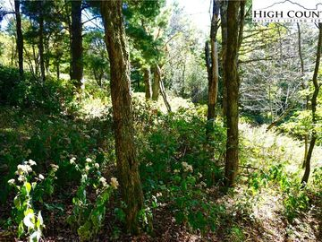 Lot #67 #68 Center Court Drive Boone, NC 28607 - Image 1