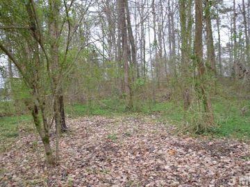 0 Woodbine Drive Louisburg, NC 27549 - Image 1