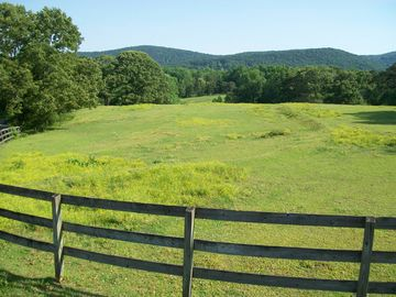 Wild Orchard Road Travelers Rest, SC 29690 - Image 1