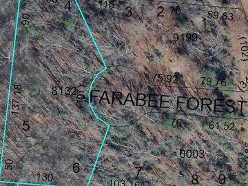 150 Farabee Forest Court Lexington, NC 27292 - Image
