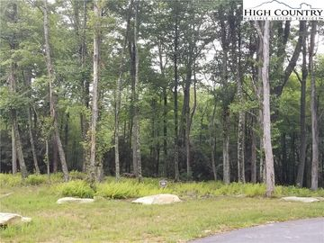 Lot 26 Twin Branches Road Blowing Rock, NC 28605 - Image 1