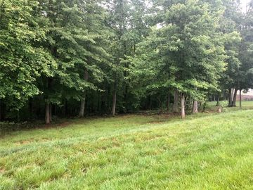 0 Friends Farm Way Stokesdale, NC 27357 - Image 1