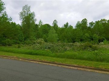 Lot 9 West Lake Trail Mebane, NC 27302 - Image 1