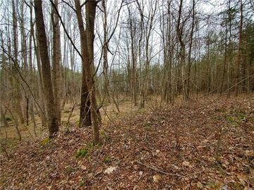 LOT 17 Clearwater Lane Browns Summit, NC 27214 - Image 1