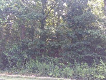 115 N Welcome Springs Way Mocksville, NC 27028 - Image 1