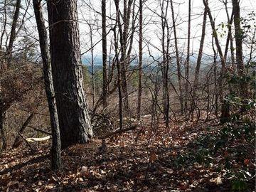 284 Jocassee Ridge Way Salem, SC 29676 - Image 1