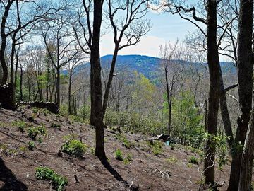 Lot 62 Forest Lane Blowing Rock, NC 28605 - Image 1