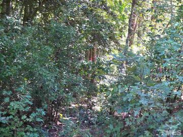 Lot 3 Pebblebrook Drive Wake Forest, NC 27587 - Image
