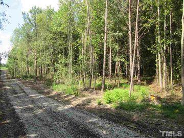 Tract 9 Earpsboro Chamblee Road Wendell, NC 27591 - Image 1