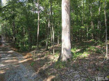 Tract 8 Earpsboro Chamblee Road Wendell, NC 27591 - Image 1