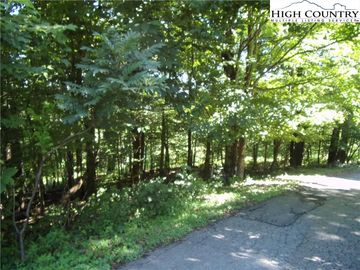 TBS Lot # 19 Doe Ridge Drive West Jefferson, NC 28694 - Image 1