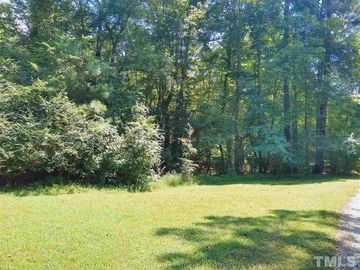 0 Liberty Bluff Lane Spring Hope, NC 27882 - Image 1