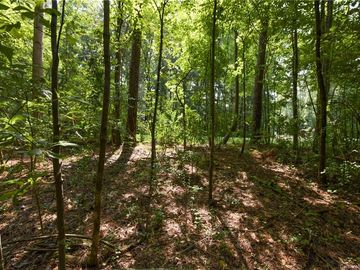 481 May Green Drive Lake Wylie, SC 29710 - Image 1