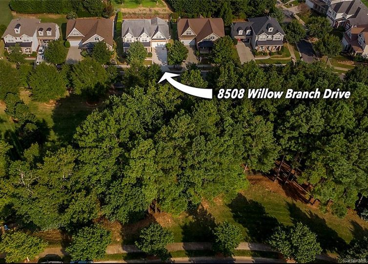 8508 Willow Branch Drive photo #1