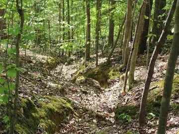 105 Wolfs Trail Chapel Hill, NC 27516 - Image 1