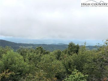 320 N Pinnacle Ridge Road Beech Mountain, NC 28604 - Image 1