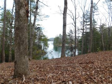 Lot 12 Old Chapman Bridge Road Salem, SC 29676 - Image 1
