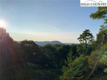 TBD Pinnacle Tree Drive West Jefferson, NC 28694 - Image 1