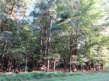 1 Shady Hollow Road Staley, NC 27355 - Image