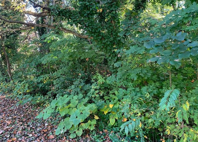 Lot 5 Brookwood Court #5 Statesville, NC 28677