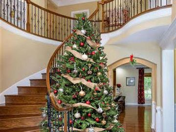 603 Powell Meadow Court Apex, NC 27539 - Image 1