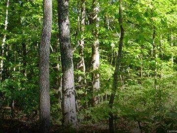 1508 Reservation Road Rock Hill, SC 29730 - Image