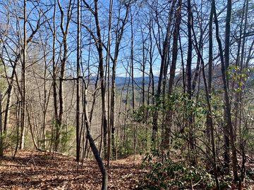 30 Acres Elk Creek Darby Road Ferguson, NC 28624 - Image 1