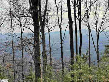 16 Lost Trail Drive Landrum, SC 29356 - Image 1