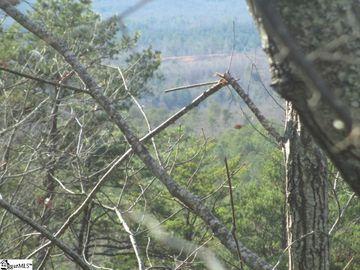 259 Jocassee Ridge Way Salem, SC 29676 - Image 1