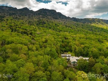 1453 Mountain Springs Road Linville, NC 28646 - Image 1
