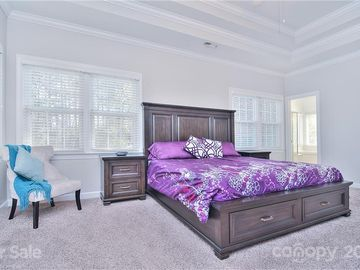 10306 Riesling Court Charlotte, NC 28277 - Image 1