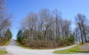 Lot 20 Grey Oaks Drive Seneca, SC 29678 - Image 1