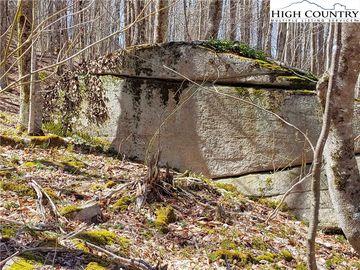 213 Wild Daisy Lane Beech Mountain, NC 28604 - Image 1