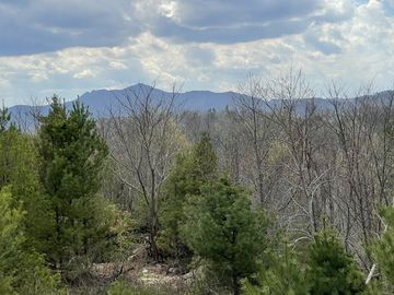 TBD Chestnut Drive Blowing Rock, NC 28605 - Image 1