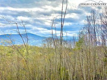 Lot 75 W Black Bear Xing Road Elk Park, NC 28622 - Image 1