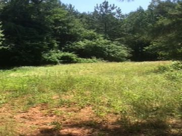 00 Griffin Mill Road Pickens, SC 29671 - Image 1