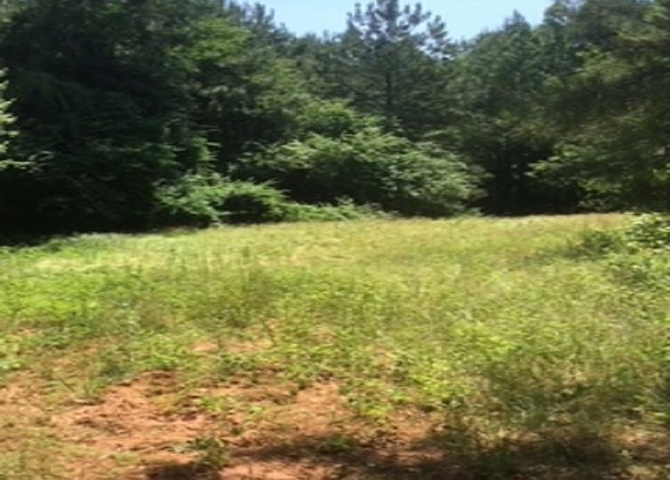 00 Griffin Mill Road Pickens, SC 29671