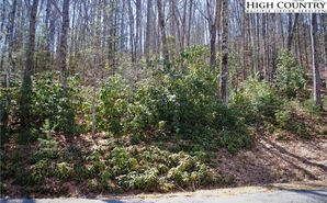 Lot 35 Maple Leaf Road Fleetwood, NC 28626 - Image 1