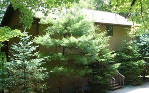 311 Pine Ridge Road Beech Mountain, NC 28604 - Image 1