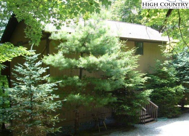 311 Pine Ridge Road Beech Mountain, NC 28604