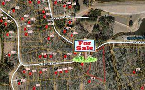 830 Sagamore Drive Louisburg, NC 27549 - Image 1